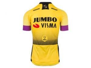 Productfoto van 2019 AGU Jumbo-Visma Shirt Heren Achterkant
